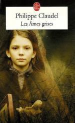 Les âmes grises de Philippe Claudel