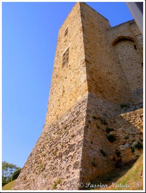 Le château de la Madeleine (9)