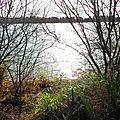 Lac Arjuzanx 05021632