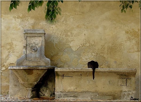 1_chat_fontaine_dos