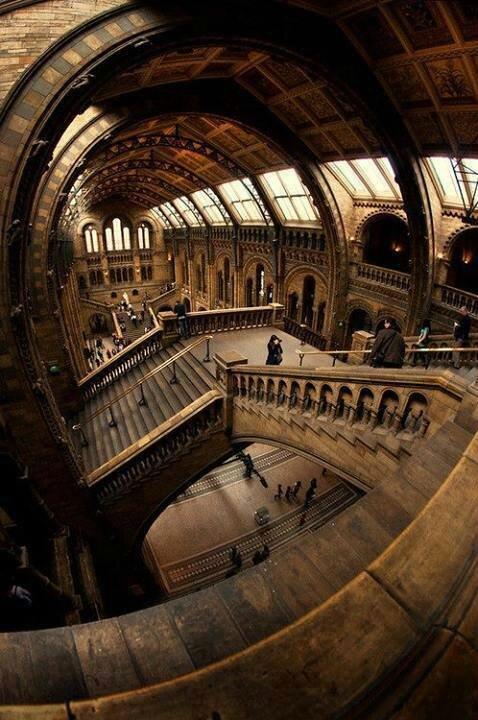 musée histoire naturel londre