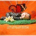 bébé papillon