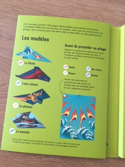 100 ptérosaures en papier usborne 1