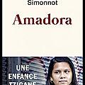 Amadora - une enfance tzigane - dominique simonnot - editions du seuil