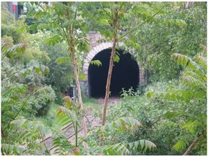 tunnel_petite_ceinture