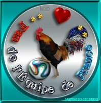 018-logo-mondial-football-2014-fan-equipe-France-coq-ballon