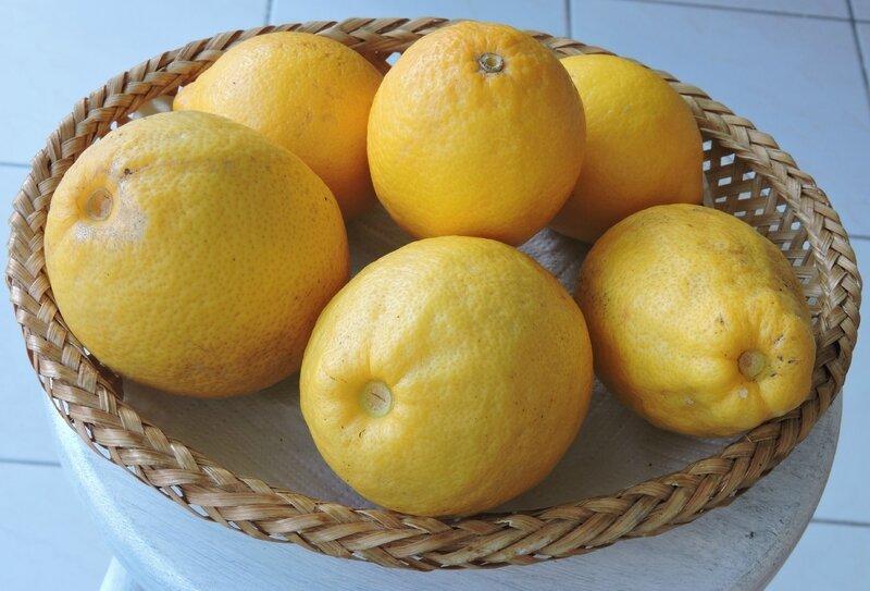 Citron 2015
