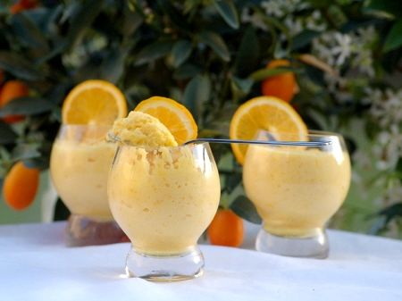 Mousse_orange_vodka_citron_038