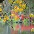 2011_11_15-POM-P1060478