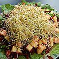 Salade de betterave, orange, pomme et laitue romaine