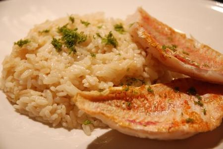 risotto_fenouil_bis