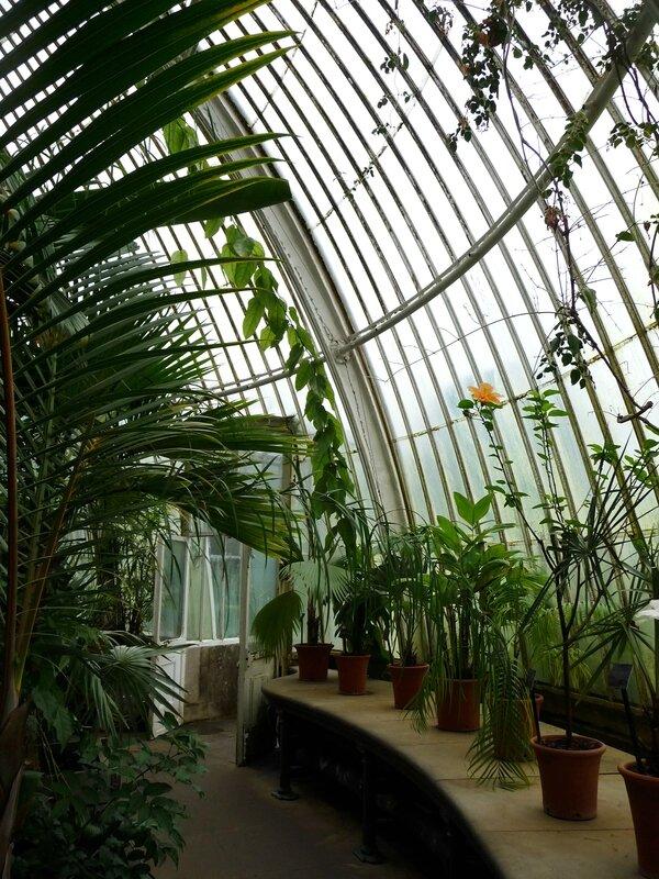 Palm House à Kew