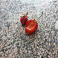 Qui mange mes fraises !