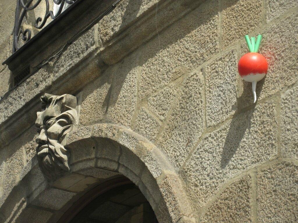 Radis tous les messages sur radis mots et images de joe krapov - Quand cueillir les radis ...