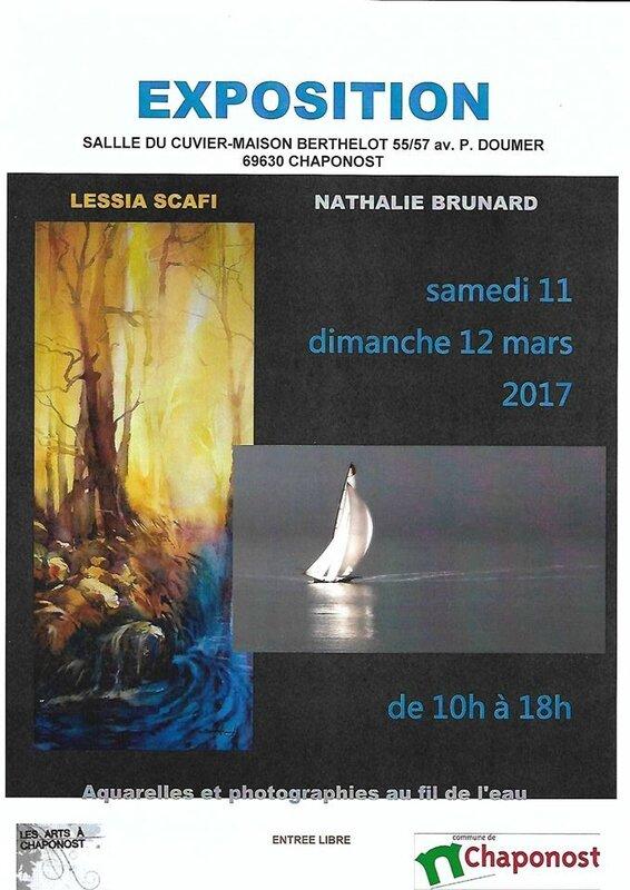 LES ARTS A CHAPONOST 11 et 12 MARS 2017