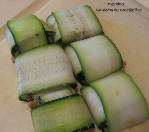 COUSSINS_DE_COURGETTES