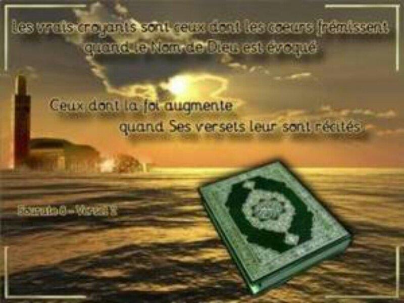 rencontres musulmanes mariage gratuit Besançon