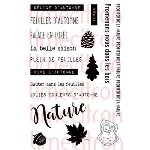 Plaisir_automne-500x500