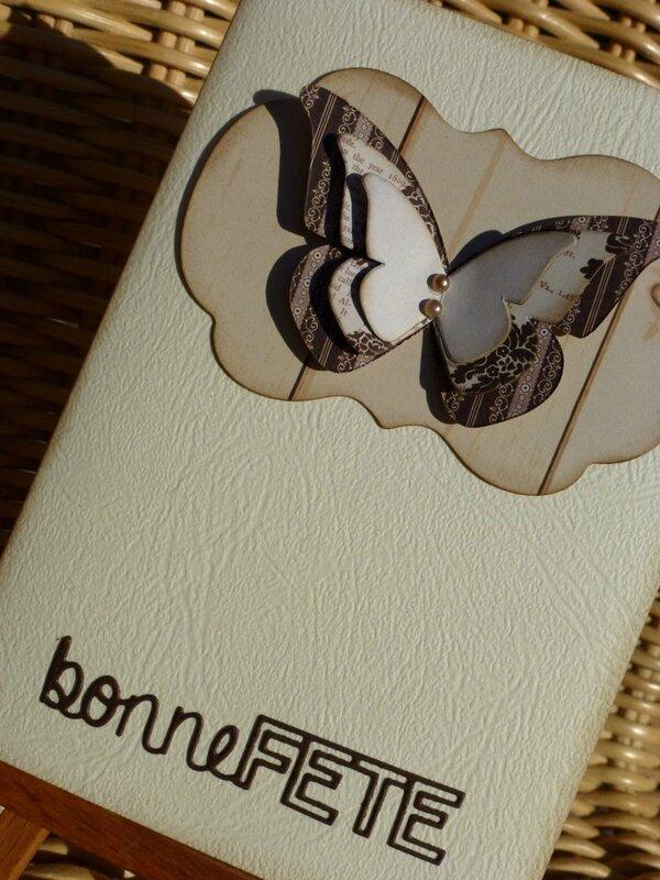 Carte-papillons08