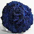Azurite Mineral Specimen Blue Crystal Blossom 