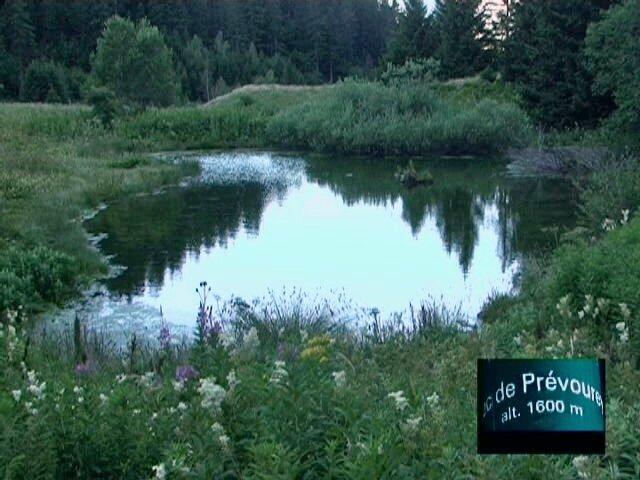 lac prévourey