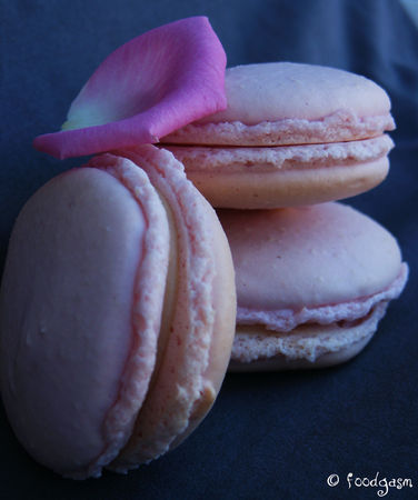 cashew_nuts_and_ginger_macarons3