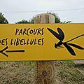 Les néologismes de papageno (joe krapov)