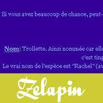 Zelapin