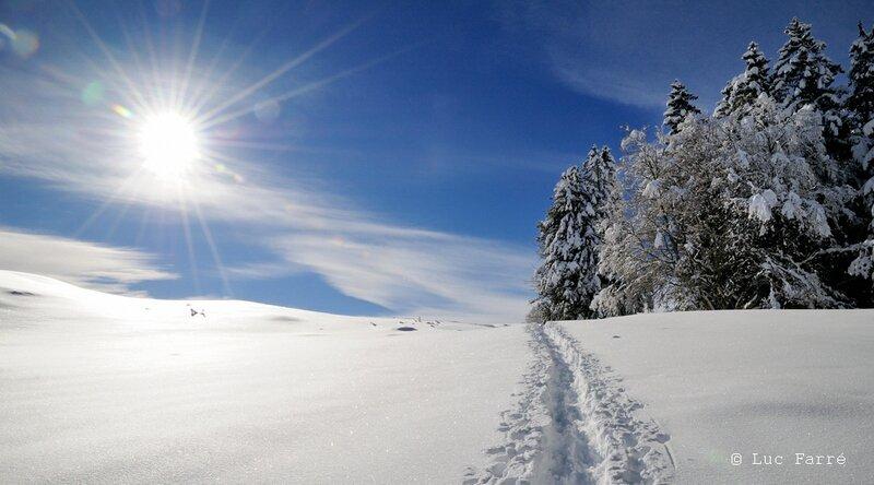 neige_44