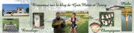 guit_banniere