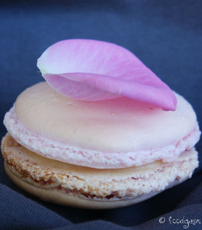 cashew_nuts_and_ginger_macarons2