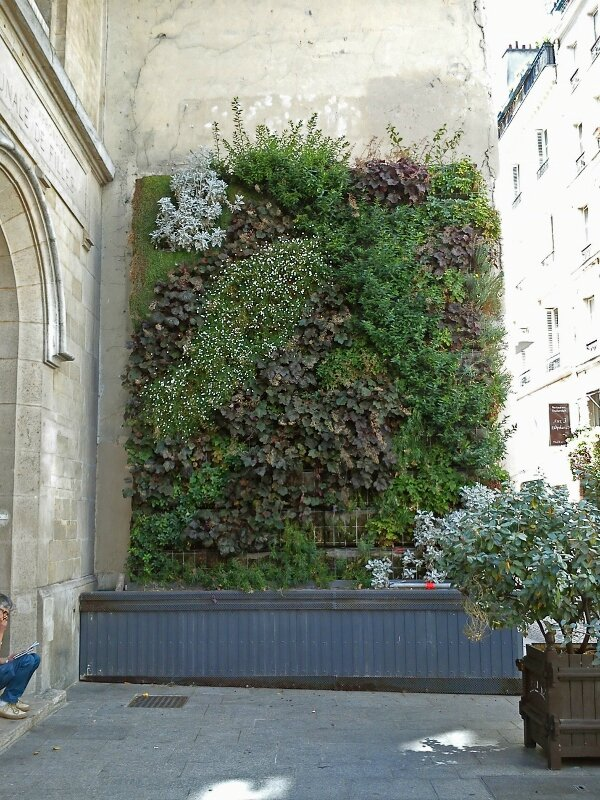 Rue Tiquetonne (600x800)