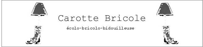 carotte_bricole