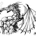 Dragon de profil