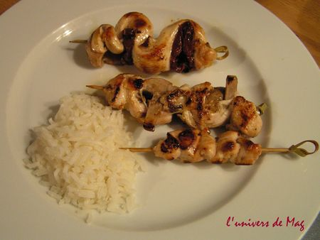brochettes_de_dinde_fa_on_yakitori__3_