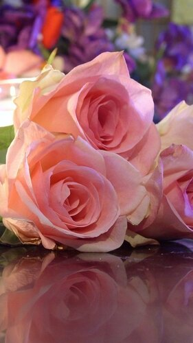 roses-flowers-three-bouquet-reflection-candle-romance-1080x1920