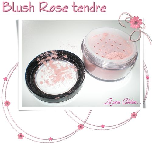 Blush rose tendre