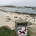 Brignogan-Plage, plage Pors Pol, panneau et phare de Pontusval (29)