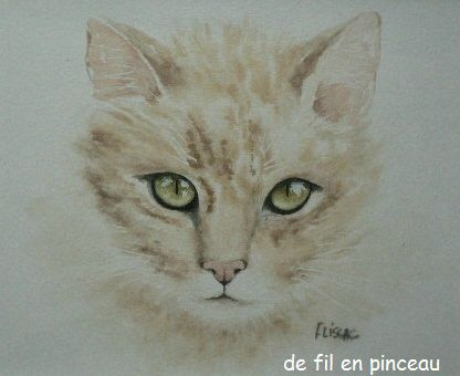 regard de chat (aquarelle)