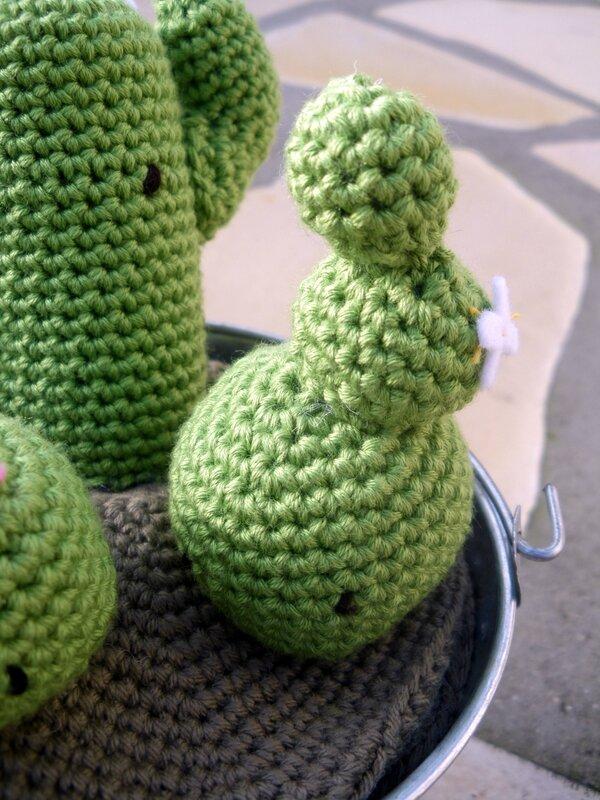 Cactus crochet (4)