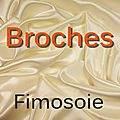 Polymre - Broches.