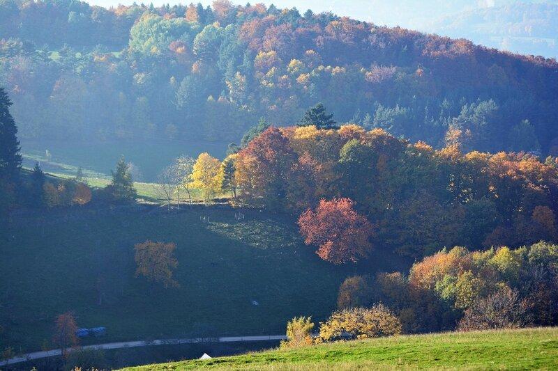 Couleurs d'automne en Alsace