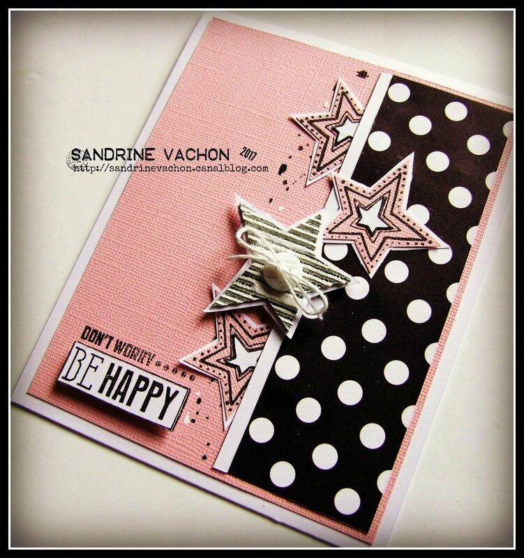 Sandrine VACHON 516 blog PCC (2)