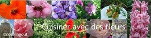 cuisiner_avec_des_fleurs__banniere