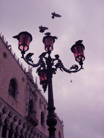 Le_palais_des_doges_et_ses_pigeons