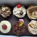 A la découverte de berko et de ses cupcakes