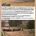 Fr3 - signes du toro l'actu - n°2