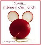 coucou_du_lundi