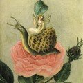 La fée et l'escargot / the fairy and the snail