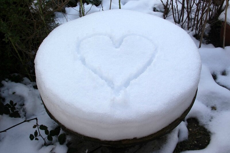 5-Coeur, jardin partagé Neige_3357